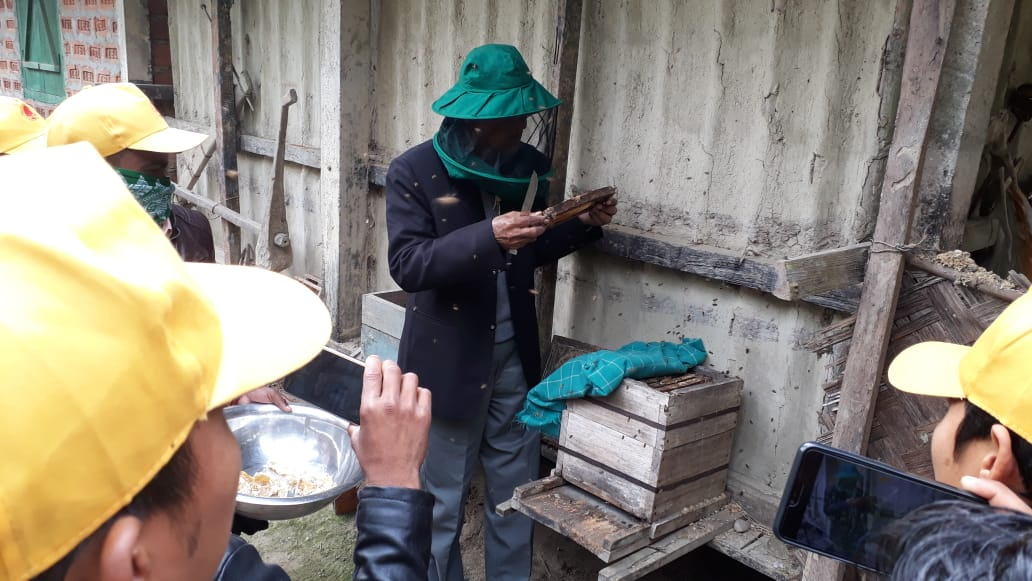 Wild Bee Keeping and Processing 2020